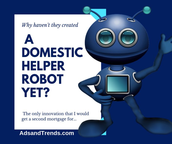 Will Someone Please Invent a Full Service Domestic Robot