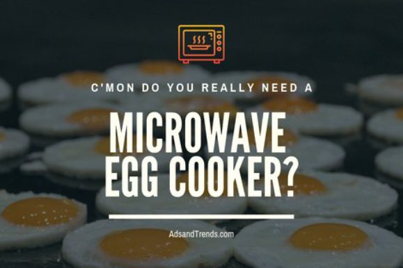 Eggwich Microwave Egg Cooker Review – Do You Really Need One?